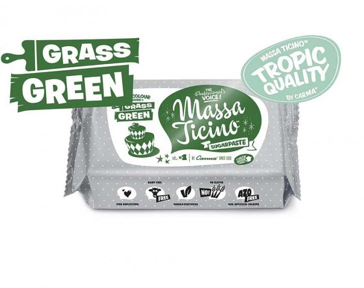 FM CA Fondantmasse Massa ticino grass green 250g