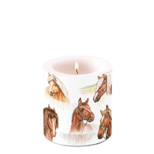 Kerze klein Horse Range